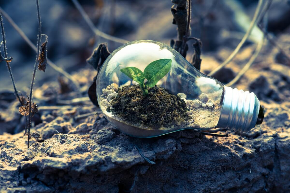 Responsible Investing Gains Broad Approval in US, UK Image