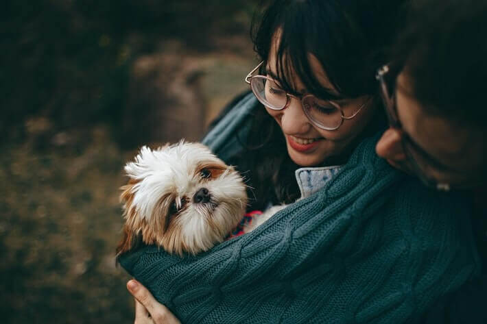 Pandemic Fuels Rise in Pet Adoptions Image