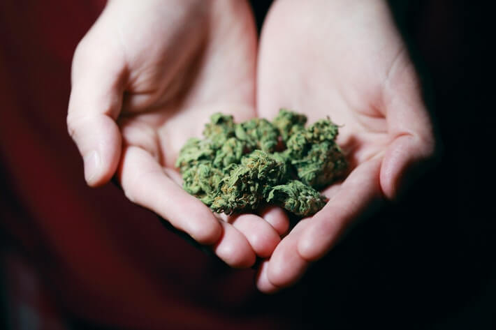 Higher Healing: Medical Marijuana Revenue Statistics for 2020