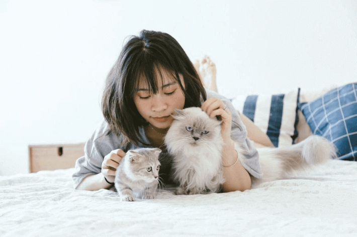 15 Insightful Pet Spending Statistics: Americans are Spending More on Pets Than Ever Image